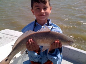 willredfish